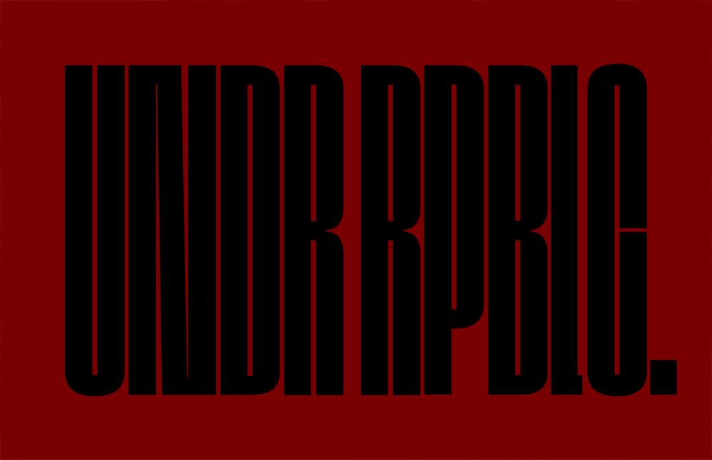 UNDR-RPBLC-42-2-sml